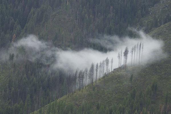 A single cloud clings to the steep hillside.