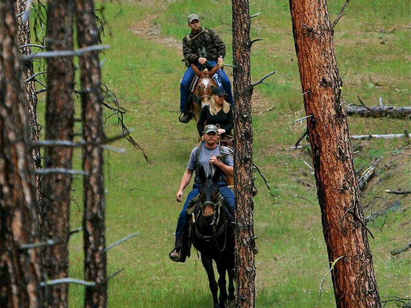 Riders on horseback.
