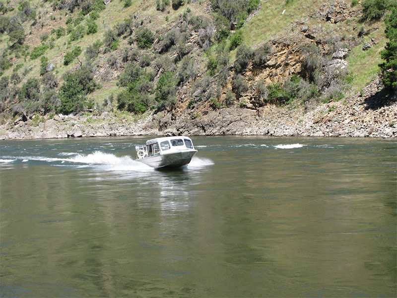 A jetboat makes its way up the Salmon River.