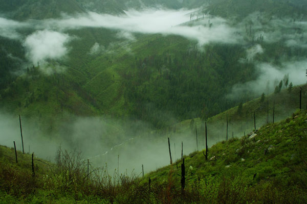 Mist settles in the valley in the remote Idaho wilderness.