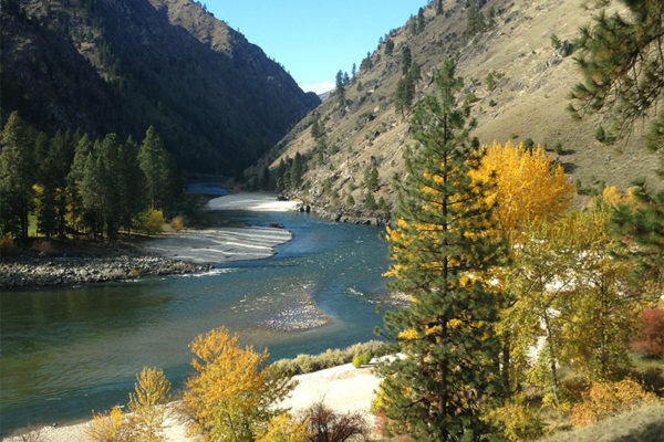 Autumn on the banks of the Salmon River.